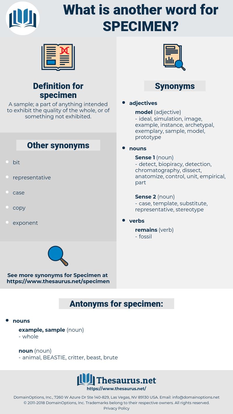 specimen, synonym specimen, another word for specimen, words like specimen, thesaurus specimen