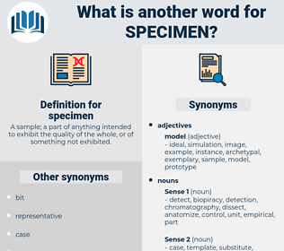 specimen, synonym specimen, another word for specimen, words like specimen, thesaurus specimen