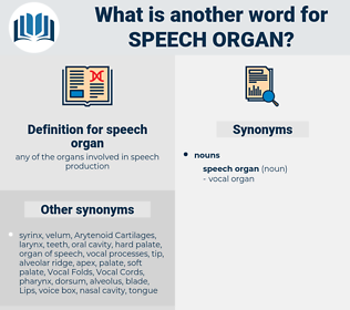 speech organ, synonym speech organ, another word for speech organ, words like speech organ, thesaurus speech organ