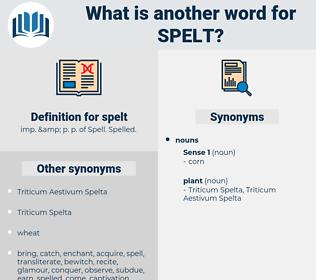 spelt, synonym spelt, another word for spelt, words like spelt, thesaurus spelt