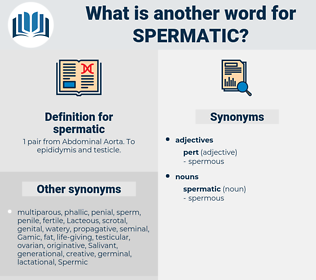 spermatic, synonym spermatic, another word for spermatic, words like spermatic, thesaurus spermatic
