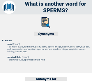 sperms, synonym sperms, another word for sperms, words like sperms, thesaurus sperms