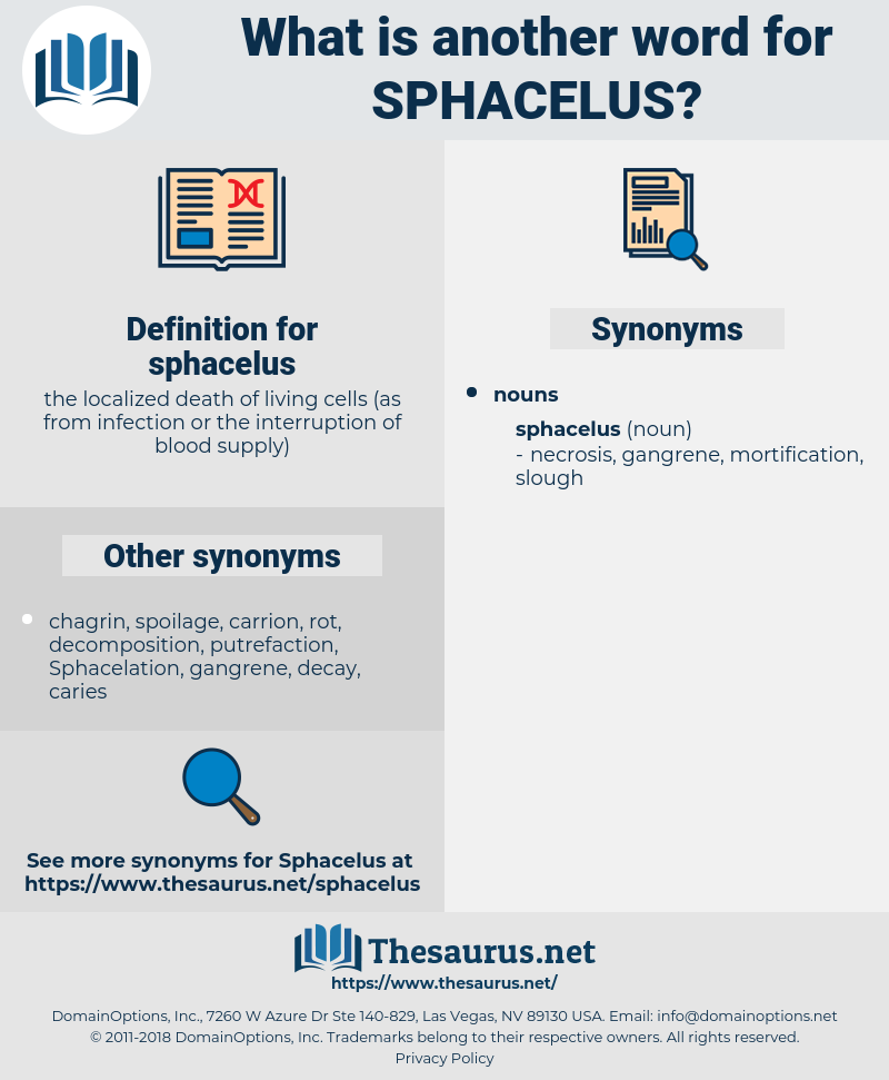 sphacelus, synonym sphacelus, another word for sphacelus, words like sphacelus, thesaurus sphacelus