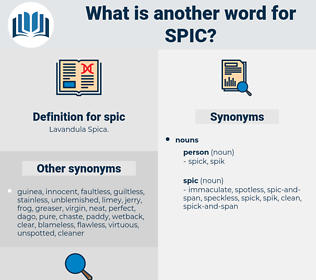 spic, synonym spic, another word for spic, words like spic, thesaurus spic