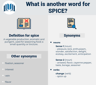 spice, synonym spice, another word for spice, words like spice, thesaurus spice