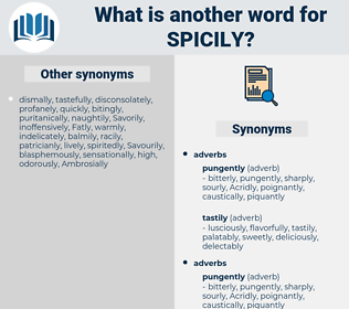 spicily, synonym spicily, another word for spicily, words like spicily, thesaurus spicily
