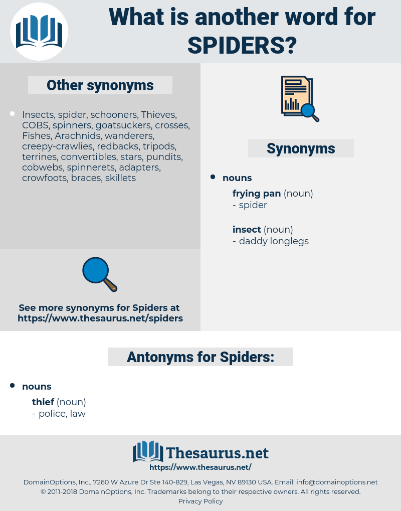 Spiders, synonym Spiders, another word for Spiders, words like Spiders, thesaurus Spiders