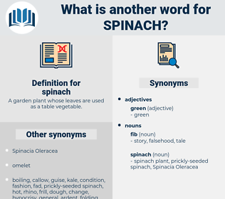 spinach, synonym spinach, another word for spinach, words like spinach, thesaurus spinach