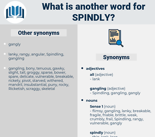 spindly, synonym spindly, another word for spindly, words like spindly, thesaurus spindly