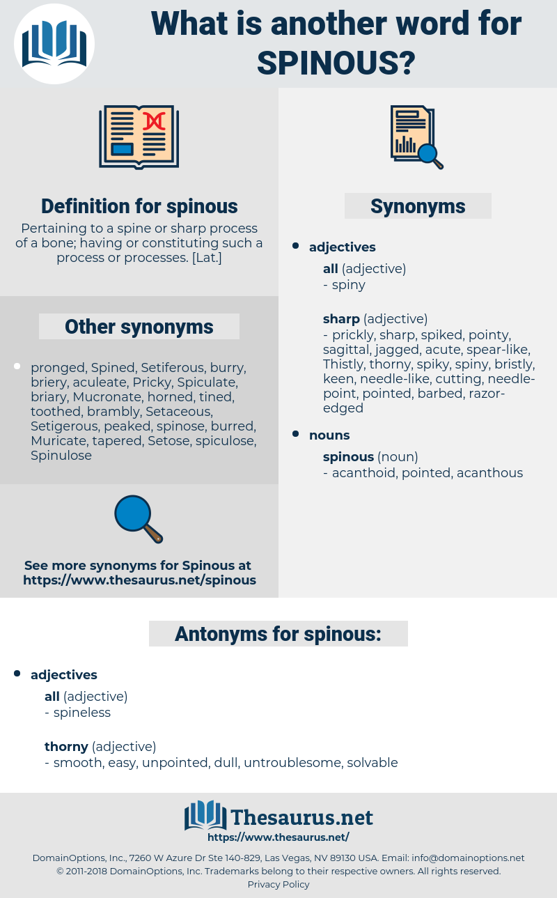 spinous, synonym spinous, another word for spinous, words like spinous, thesaurus spinous
