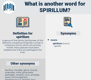 spirillum, synonym spirillum, another word for spirillum, words like spirillum, thesaurus spirillum
