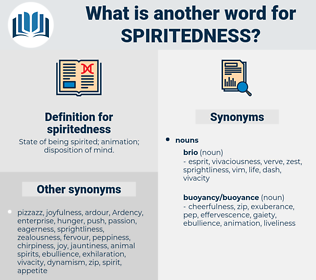 spiritedness, synonym spiritedness, another word for spiritedness, words like spiritedness, thesaurus spiritedness