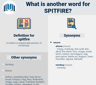 spitfire, synonym spitfire, another word for spitfire, words like spitfire, thesaurus spitfire