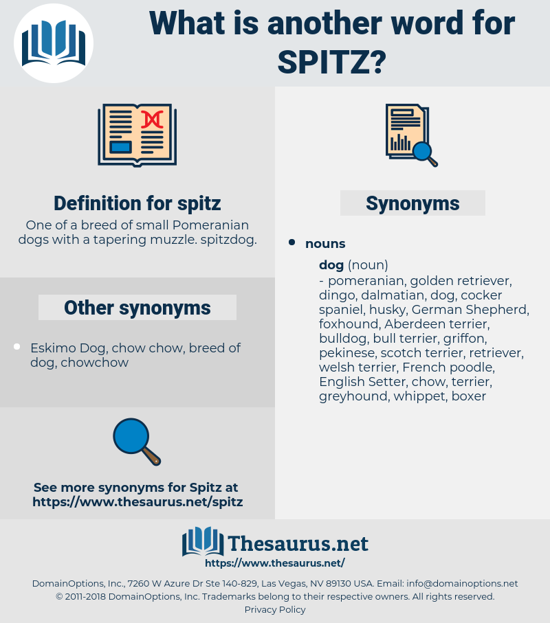 spitz, synonym spitz, another word for spitz, words like spitz, thesaurus spitz