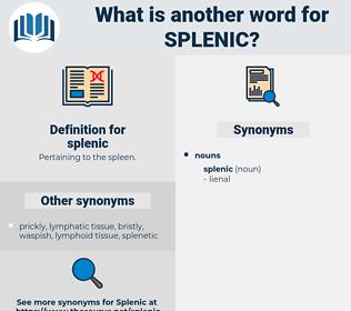 splenic, synonym splenic, another word for splenic, words like splenic, thesaurus splenic