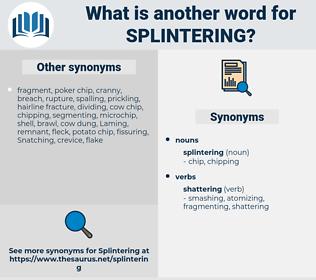 splintering, synonym splintering, another word for splintering, words like splintering, thesaurus splintering