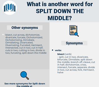 split down the middle, synonym split down the middle, another word for split down the middle, words like split down the middle, thesaurus split down the middle