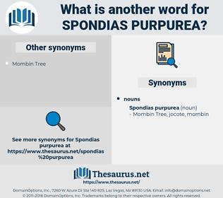 Spondias Purpurea, synonym Spondias Purpurea, another word for Spondias Purpurea, words like Spondias Purpurea, thesaurus Spondias Purpurea