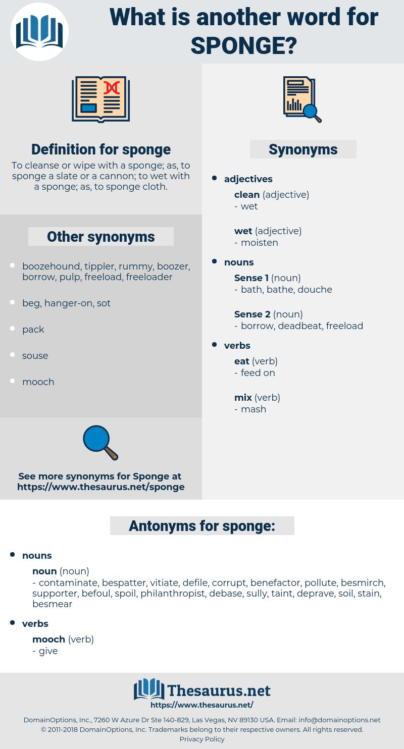 sponge, synonym sponge, another word for sponge, words like sponge, thesaurus sponge