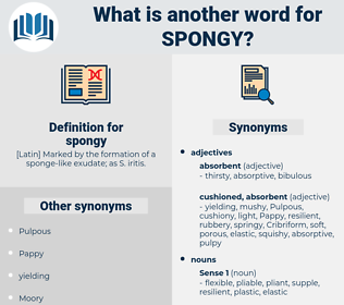 spongy, synonym spongy, another word for spongy, words like spongy, thesaurus spongy