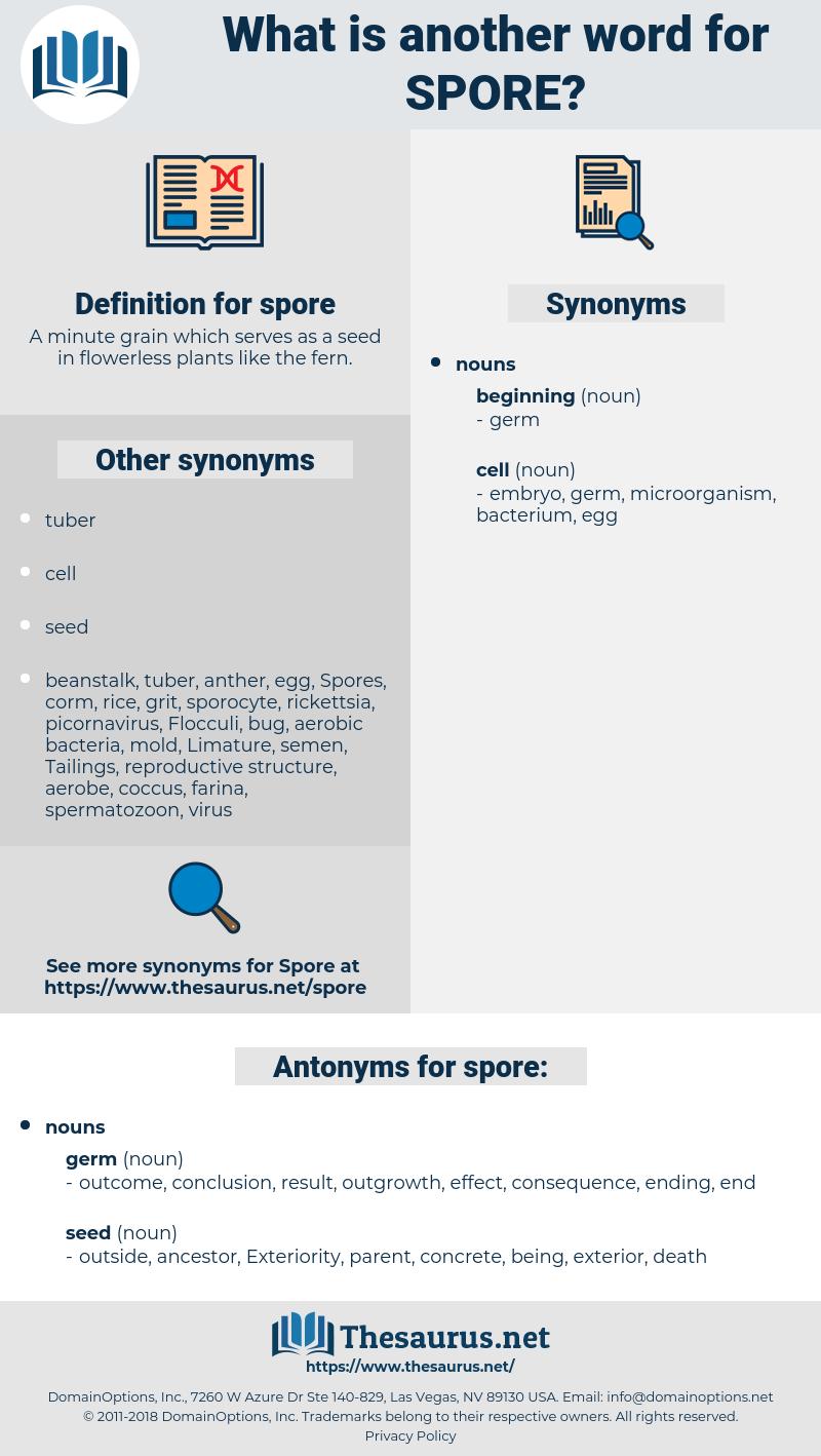 spore, synonym spore, another word for spore, words like spore, thesaurus spore
