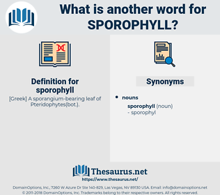 sporophyll, synonym sporophyll, another word for sporophyll, words like sporophyll, thesaurus sporophyll