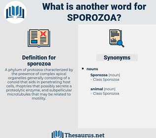 sporozoa, synonym sporozoa, another word for sporozoa, words like sporozoa, thesaurus sporozoa