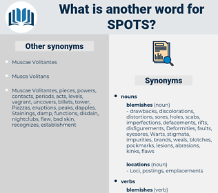 spots, synonym spots, another word for spots, words like spots, thesaurus spots