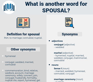 spousal, synonym spousal, another word for spousal, words like spousal, thesaurus spousal