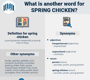 spring chicken, synonym spring chicken, another word for spring chicken, words like spring chicken, thesaurus spring chicken