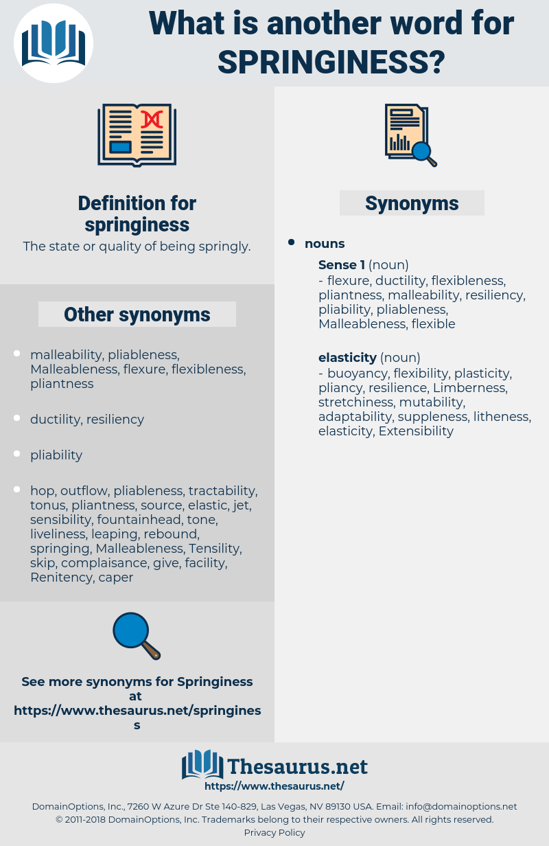 springiness, synonym springiness, another word for springiness, words like springiness, thesaurus springiness