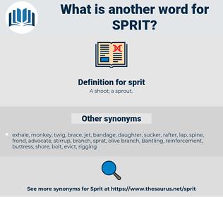 sprit, synonym sprit, another word for sprit, words like sprit, thesaurus sprit