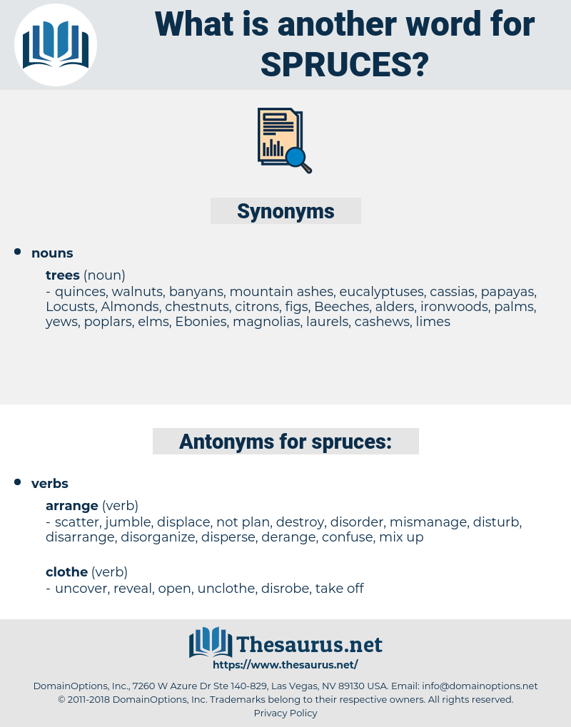 spruces, synonym spruces, another word for spruces, words like spruces, thesaurus spruces