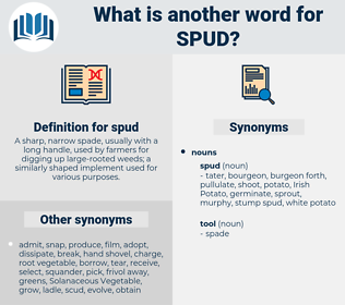 spud, synonym spud, another word for spud, words like spud, thesaurus spud
