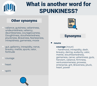 spunkiness, synonym spunkiness, another word for spunkiness, words like spunkiness, thesaurus spunkiness