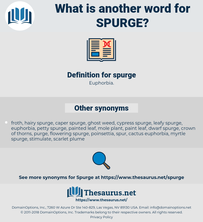 spurge, synonym spurge, another word for spurge, words like spurge, thesaurus spurge