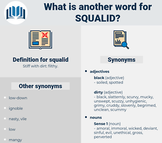 squalid, synonym squalid, another word for squalid, words like squalid, thesaurus squalid
