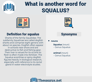 squalus, synonym squalus, another word for squalus, words like squalus, thesaurus squalus