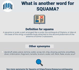 squama, synonym squama, another word for squama, words like squama, thesaurus squama