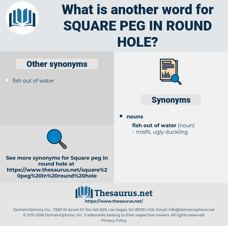 square peg in round hole, synonym square peg in round hole, another word for square peg in round hole, words like square peg in round hole, thesaurus square peg in round hole