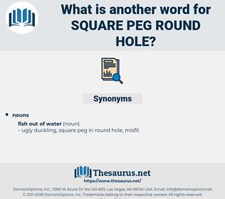 square peg round hole, synonym square peg round hole, another word for square peg round hole, words like square peg round hole, thesaurus square peg round hole