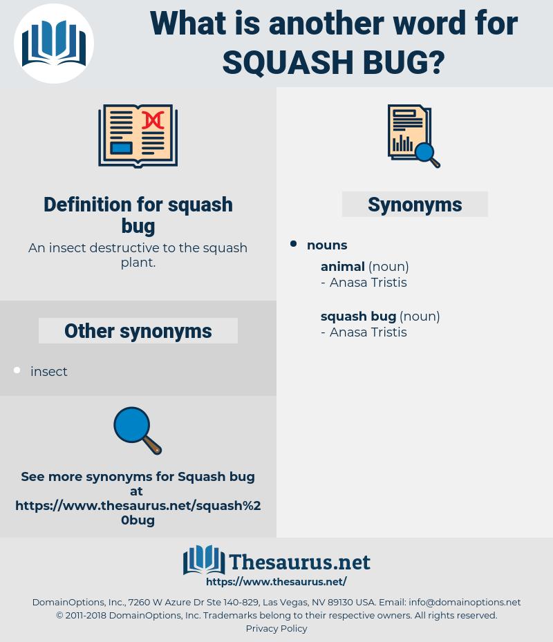 squash bug, synonym squash bug, another word for squash bug, words like squash bug, thesaurus squash bug
