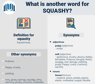 squashy, synonym squashy, another word for squashy, words like squashy, thesaurus squashy