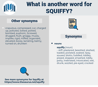 squiffy, synonym squiffy, another word for squiffy, words like squiffy, thesaurus squiffy