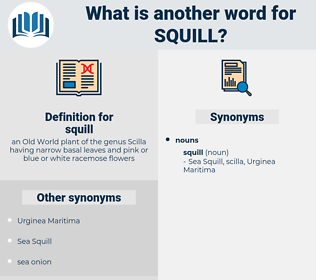 squill, synonym squill, another word for squill, words like squill, thesaurus squill