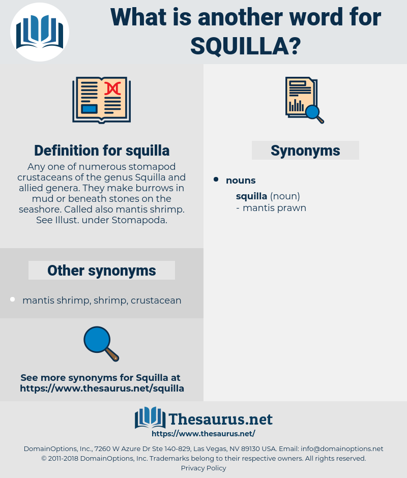 squilla, synonym squilla, another word for squilla, words like squilla, thesaurus squilla