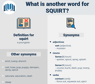 squirt, synonym squirt, another word for squirt, words like squirt, thesaurus squirt