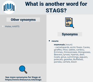 stags, synonym stags, another word for stags, words like stags, thesaurus stags