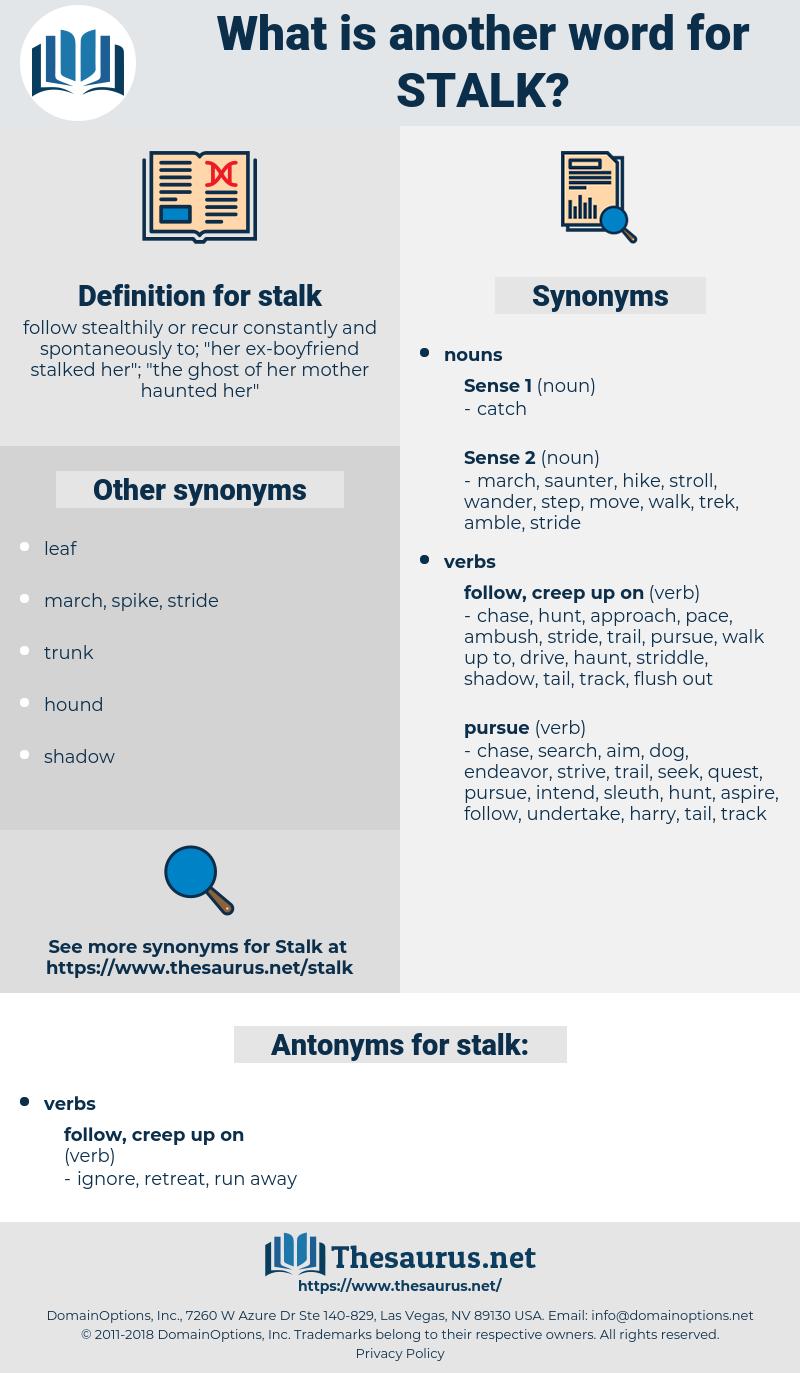 stalk, synonym stalk, another word for stalk, words like stalk, thesaurus stalk