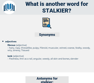 stalkier, synonym stalkier, another word for stalkier, words like stalkier, thesaurus stalkier
